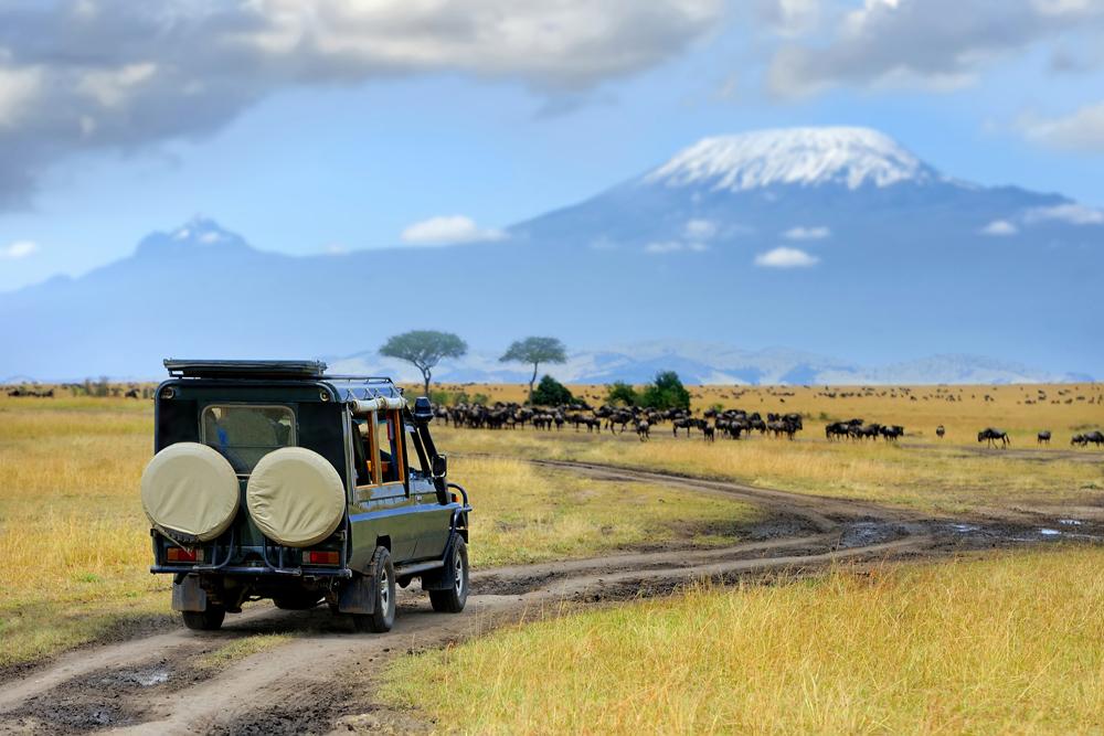 7 Day Safari to Masai Mara Game Reserve