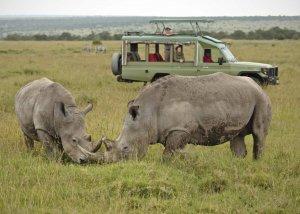 11 Day Tanzania Safari and Zanzibar Vacation