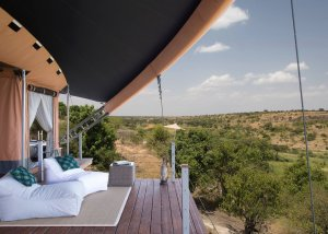 9 DAYS KENYA AND TANZANIA LODGES SAFARI