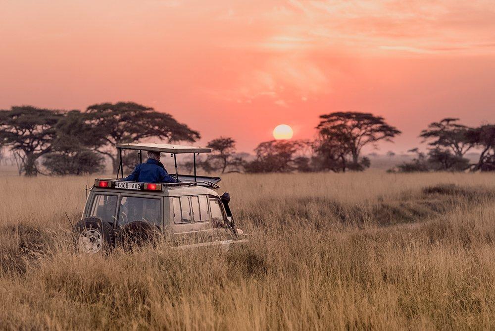 6 Day Serengeti Tented Camps Safari