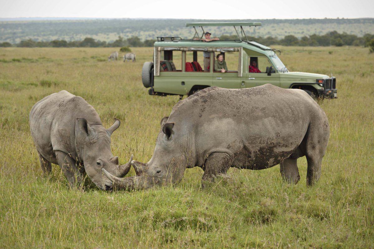 8 DAY TANZANIA BUDGET ADVENTURE BIG FIVE SAFARI