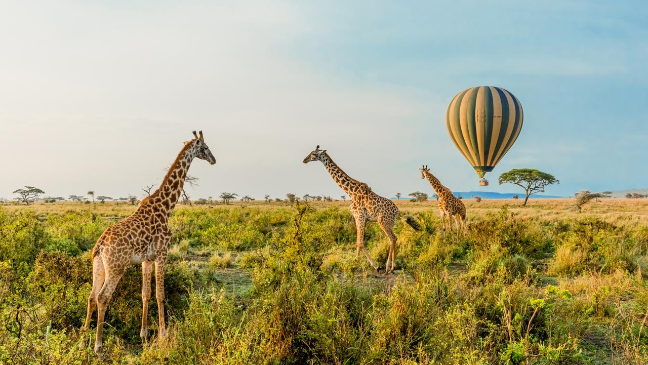8 DAY SERENGETI GAME DRIVES AND BALLOON SAFARI