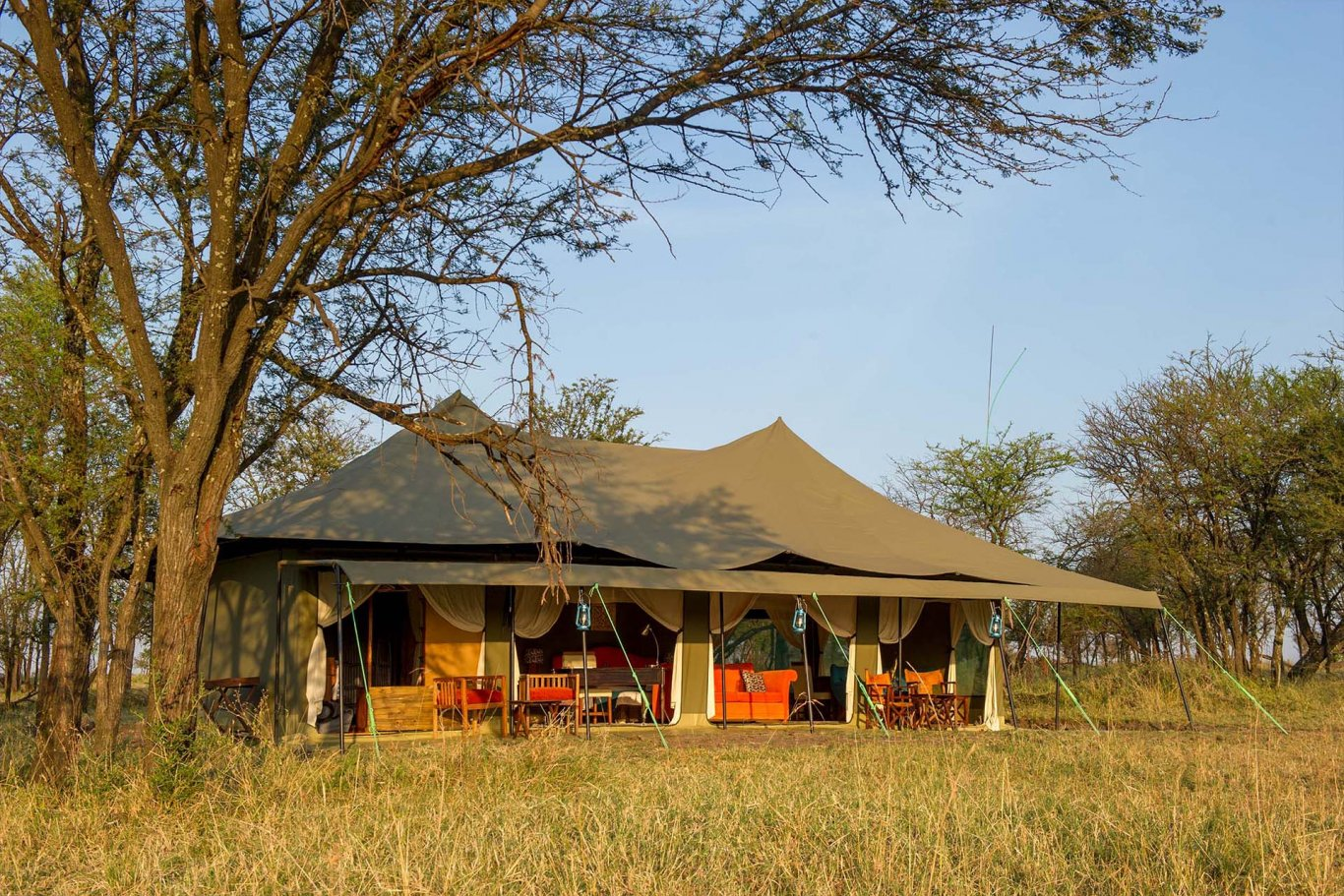 6 DAY SERENGETI BUDGET TENTED CAMPS SAFARI