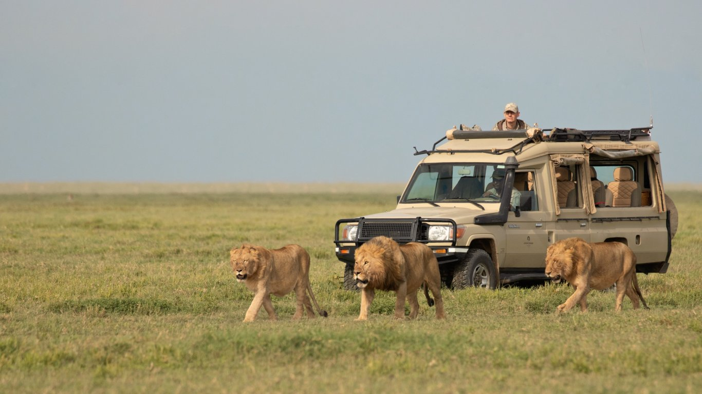 12 Days Great Serengeti Adventure Big Cats Safari
