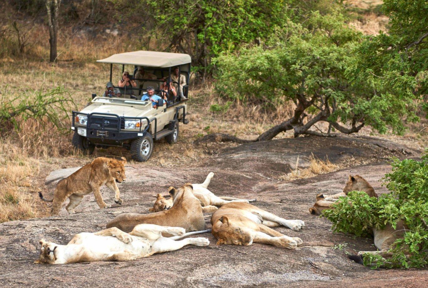 8-Day-Tanzania-Wildlife-Safari-and-Cultural-Tourism-.jpg