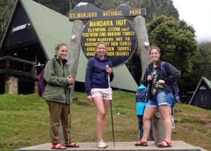 Unforgettable Mount Kilimanjaro Day Trip Expedition